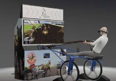 Harness racing arcade game